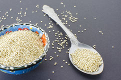 Quinoa Στοκ εικόνες με δικαίωμα ελεύθερης χρήσης