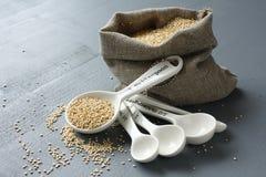 Quinoa adra w małym burlap worku i porcelan pomiarowych łyżkach Obrazy Stock