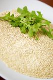 Quinoa and Arugula Royalty Free Stock Photography