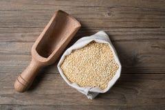 Quinoa avec le garant Image libre de droits