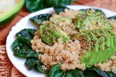Quinoa avec les épinards et l'avocat Salade épicée d'avocat d'épinards de quinoa d'un plat blanc closeup Photos libres de droits