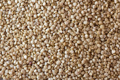 Quinoa background Royalty Free Stock Image