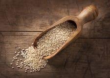 Quinoa blanca foto de archivo