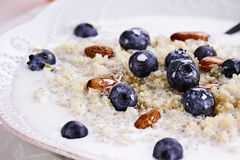 Quinoa and Blueberries Royalty Free Stock Photo