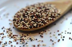 Quinoa and Chia Royalty Free Stock Photos