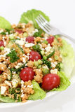 Quinoa and chickpea salad. Healthy quinoa chickpea lettuce salad Royalty Free Stock Photos