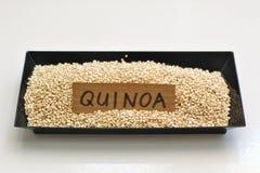 Quinoa dans la cuvette noire Photographie stock