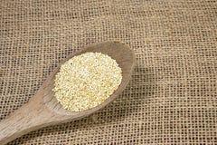 Quinoa e cucchiaio-concetto di legno Fotografia Stock Libera da Diritti