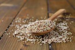 Quinoa em uma colher de madeira Imagens de Stock