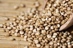 Quinoa et une spatule en bois Photos stock