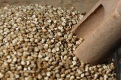 Quinoa et une spatule en bois Photo libre de droits