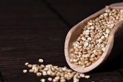 Quinoa et une spatule en bois Photographie stock
