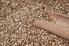 Quinoa et une spatule en bois Image stock