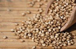 Quinoa et une spatule en bois Photographie stock libre de droits