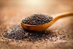 Quinoa Grões pretas em uma colher de madeira Conceito de dieta Sementes do quinoa preto - chenopodium - quinoa fotografia de stock royalty free