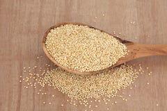 Quinoa Grain Royalty Free Stock Photos