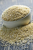 Quinoa grain closeup Royalty Free Stock Images
