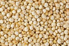 Quinoa Grains Royalty Free Stock Photo