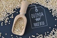 Quinoa grains. Closeup - 100% bio Royalty Free Stock Photography