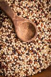 Quinoa Grains Organic stock photos