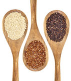 Quinoa grains Stock Photos