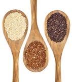 Quinoa grains Stock Photos