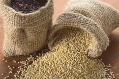 Quinoa grezza Fotografie Stock Libere da Diritti