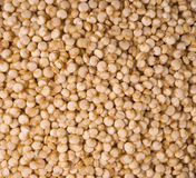 Quinoa - healthy, edible seed background Stock Images