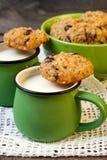 Quinoa koekjes Royalty-vrije Stock Afbeelding