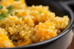 Quinoa med pumpa Fotografering för Bildbyråer