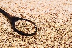 Quinoa mista dei semi asciutti Fotografia Stock