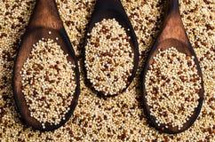 Quinoa mista dei semi asciutti Fotografie Stock