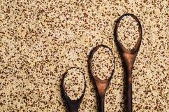 Quinoa mista dei semi asciutti Immagini Stock Libere da Diritti