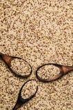 Quinoa mista dei semi asciutti Fotografia Stock Libera da Diritti