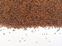 Quinoa nera Fotografia Stock