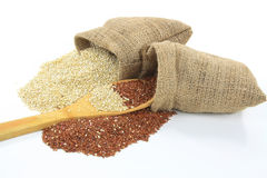 Quinoa orgánica. Foto de archivo