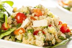 Quinoa orgânico do vegetariano com vegetais Imagens de Stock