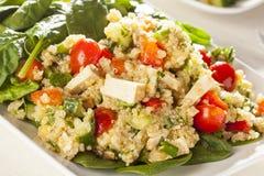 Quinoa organica del vegano con le verdure Fotografia Stock