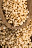 Quinoa popping Royalty Free Stock Photo