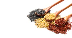 Quinoa. Red, black and white quinoa grains in a wooden spoons isolated on white background. Chenopodium quinoa Stock Photography