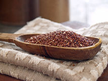 Quinoa rossa Fotografie Stock Libere da Diritti