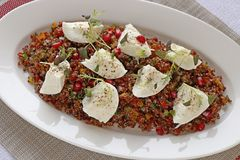 Quinoa salad with buffalo mozzarella cheese royalty free stock photo