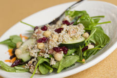 Quinoa Salad. Fresh and healthy quinoa salad on bed of spinach with dried cranberries Royalty Free Stock Image