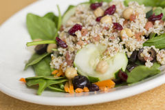 Quinoa Salad. Fresh and healthy quinoa salad on bed of spinach with dried cranberries Stock Image