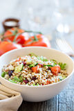 Quinoa salad with fresh vegetables. Quinoa salad with fresh tomatoes, cucumbers and salad leaves Royalty Free Stock Image