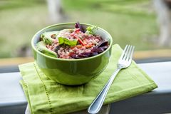 Quinoa salad on a tablecloth with garden background stock photo