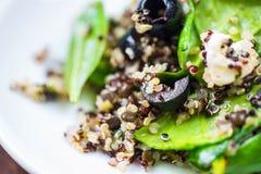 Quinoa salad on white plate. Quinoa salad basil leaf,mozarella cheese,black olive,tomato in white plate on blue baclground. Detail Stock Photo