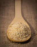Quinoa seed on wooden spoon and linen background. Royalty Free Stock Photography
