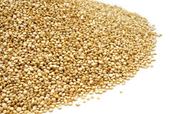 Quinoa seeds Stock Photography