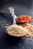 Quinoa 3 Royalty Free Stock Photo